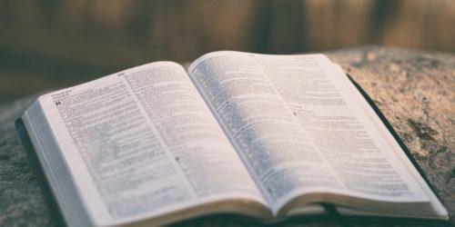 本は一冊だけ読むな!~並行読みがあなたの財産を形作る